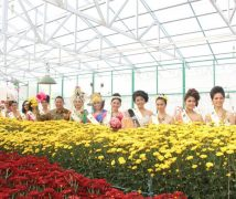 Festival Bunga Tomohon 2017 - International Flower Festival (TIFF)