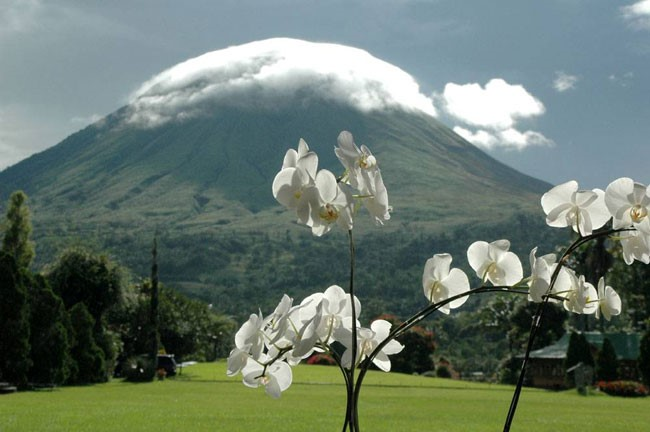 Gunung Lokon Festival Bunga Tomohon 2017 - International Flower Festival (TIFF)